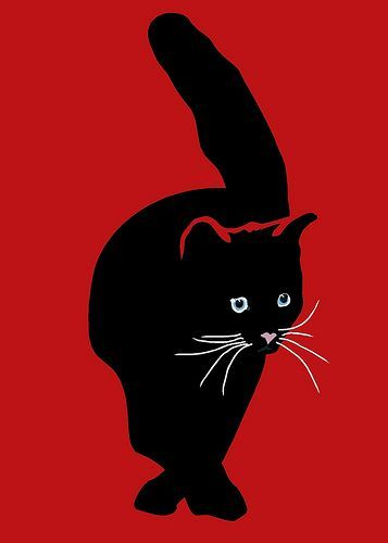 red black cat
