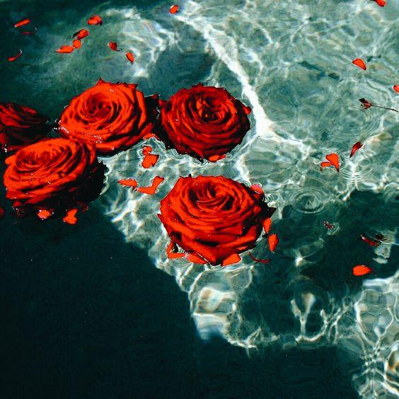 Rose water.jpg